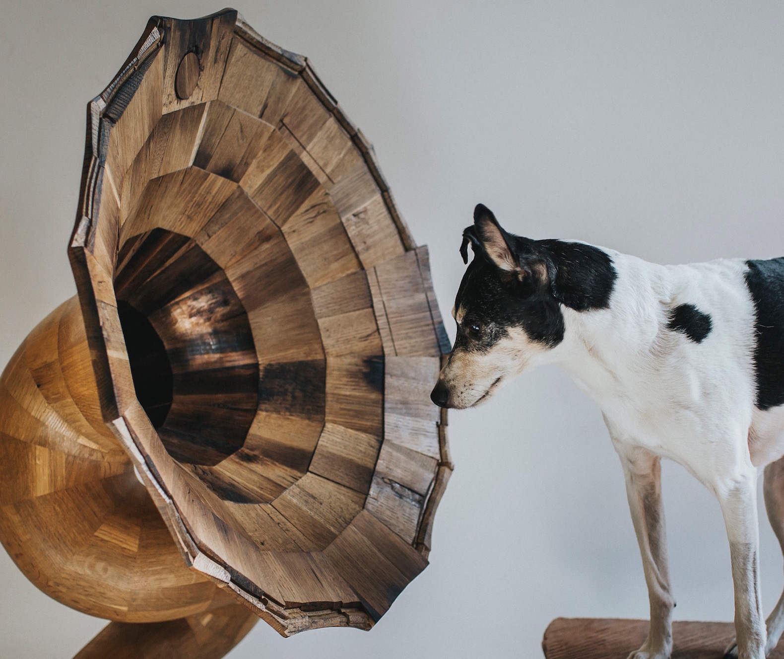 Gorgeous wooden horn speakers are made from reclaimed liquor