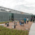 Immense drought tolerant green roof provides valuable for 1 marymount terrace boonview