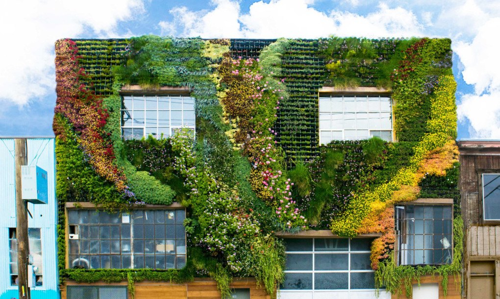 San Franciscou0027s First Community Built Living Wall Is A Drought Resistant  Masterpiece | Inhabitat   Green Design, Innovation, Architecture, Green  Building Part 67
