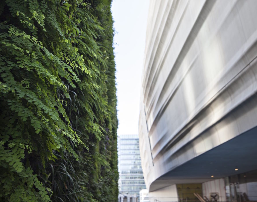 SFMOMA Living Wall by Habitat Horticulture, SFMOMA green wall, SFMOMA living wall, San Francisco green wall, nation's biggest living wall, U.S. biggest public living wall