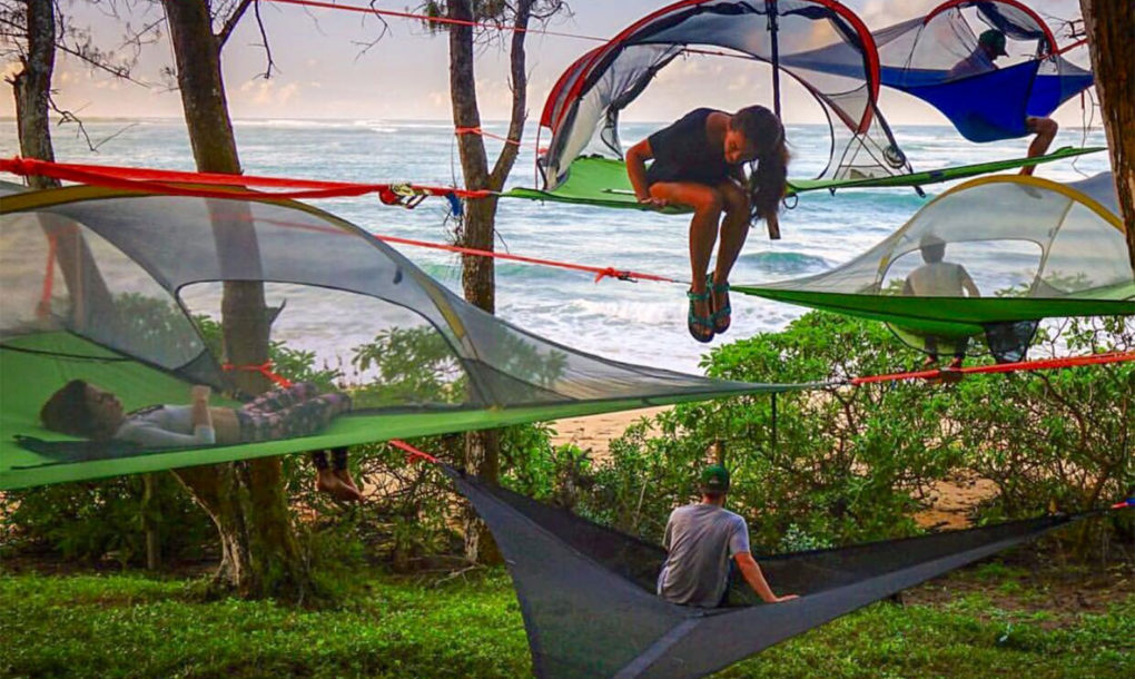 Tentsileu0027s hanging Stingray tent is a treehouse you can take anywhere in the world | Inhabitat - Green Design Innovation Architecture Green Building & Tentsileu0027s hanging Stingray tent is a treehouse you can take ...