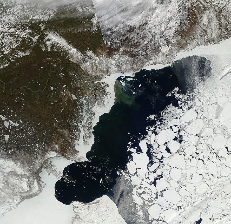 Arctic, Arctic sea ice, climate change, global warming, weather, melting ice, ice, National Snow and Ice Data Center, NASA, data