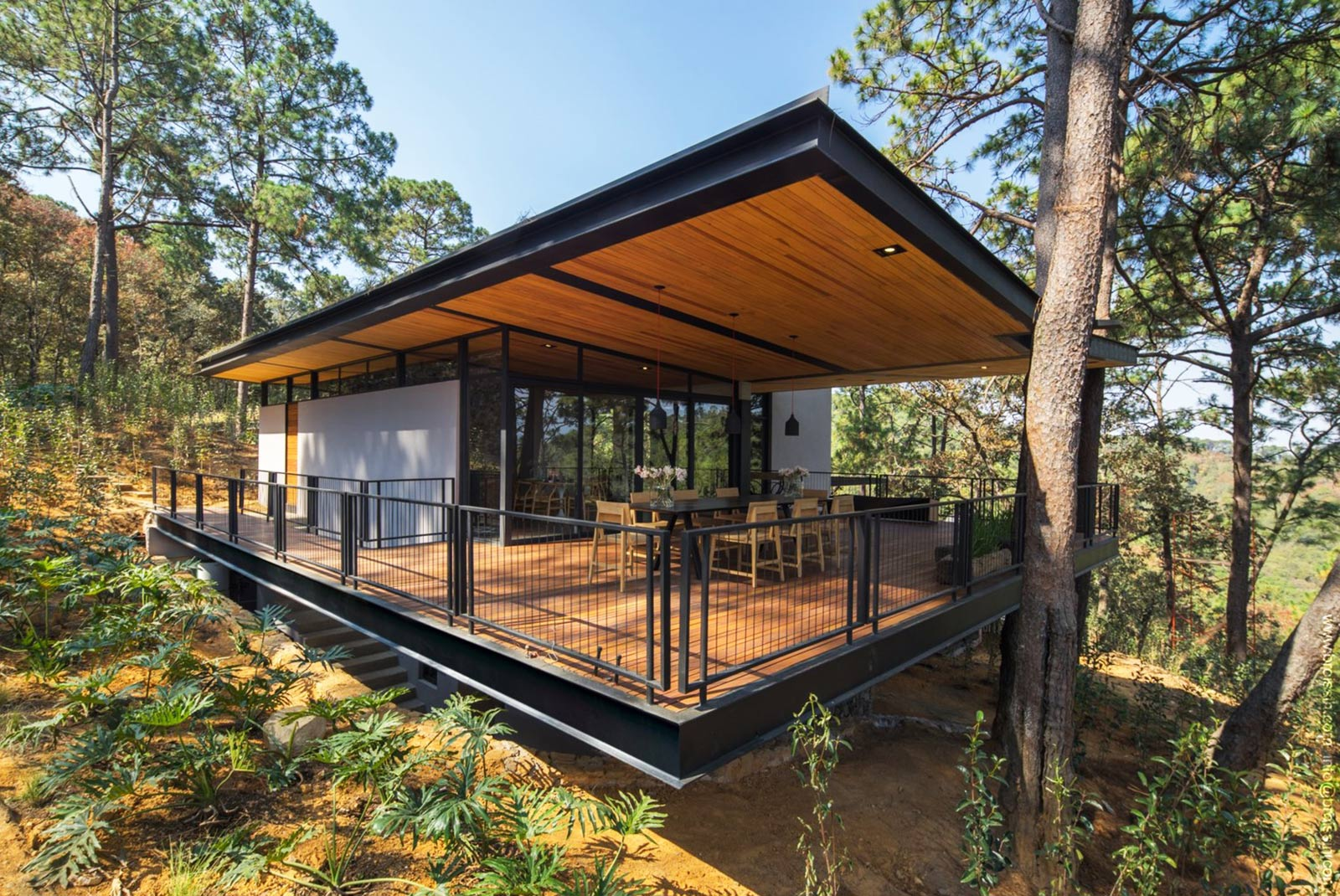 Insulating Green Roof Disguises A Stunning Woodland Home In Mexico