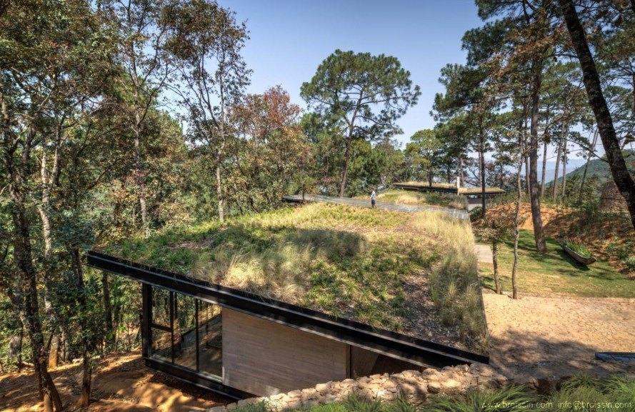 Broissin, green-roofed home, woodland home, Irekua Anatani house, Mexico, cantilevered deck, outdoor pool, open-plan home