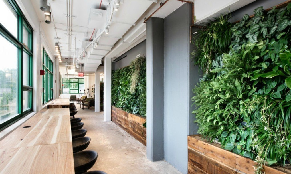 Vertical Bike Storage >> Etsy's new Brooklyn headquarters is one of the greenest ...