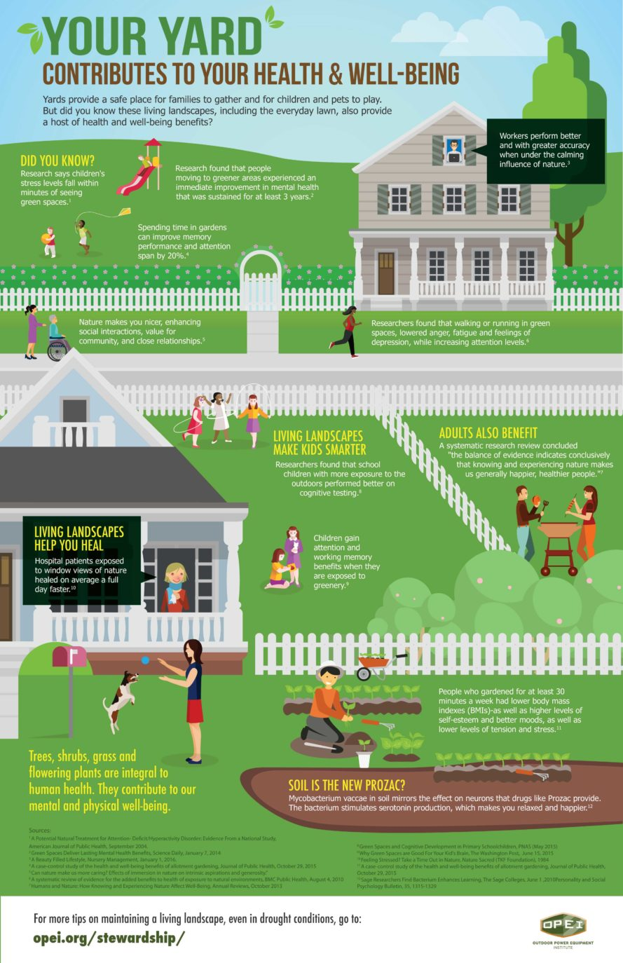 Image result for Great Gardening Tips To Build The Perfect Garden infographics