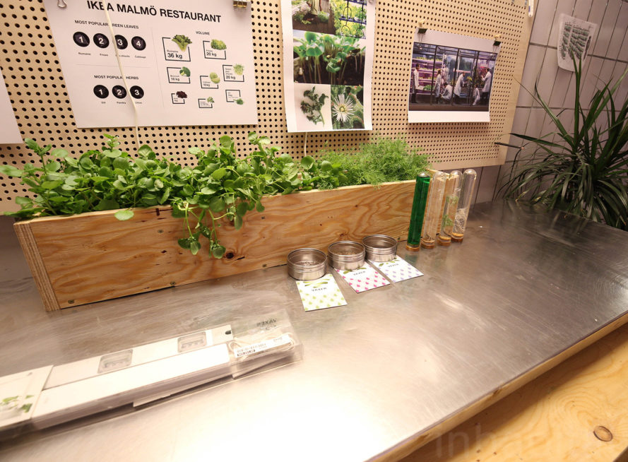 Ikea 39 S Space10 Is Creating On Site Aquaponic Farms For