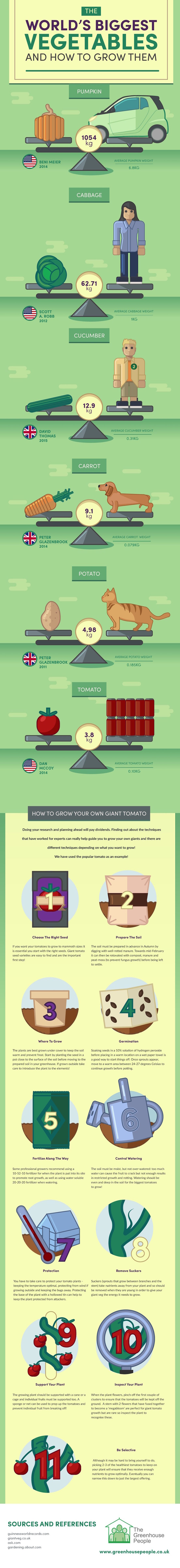 The Greenhouse People, world's biggest vegetables, reader submitted content, Guinness World Record, Beni Meier, world's largest pumpkin, how to grow big vegetables, infographic