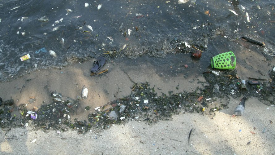 rio de janerio, olympics, 2016 summer olympics, superbugs, antibiotic resistance, super bacteria, water contamination, waste treatment, water pollution, sewage treatment, brazil