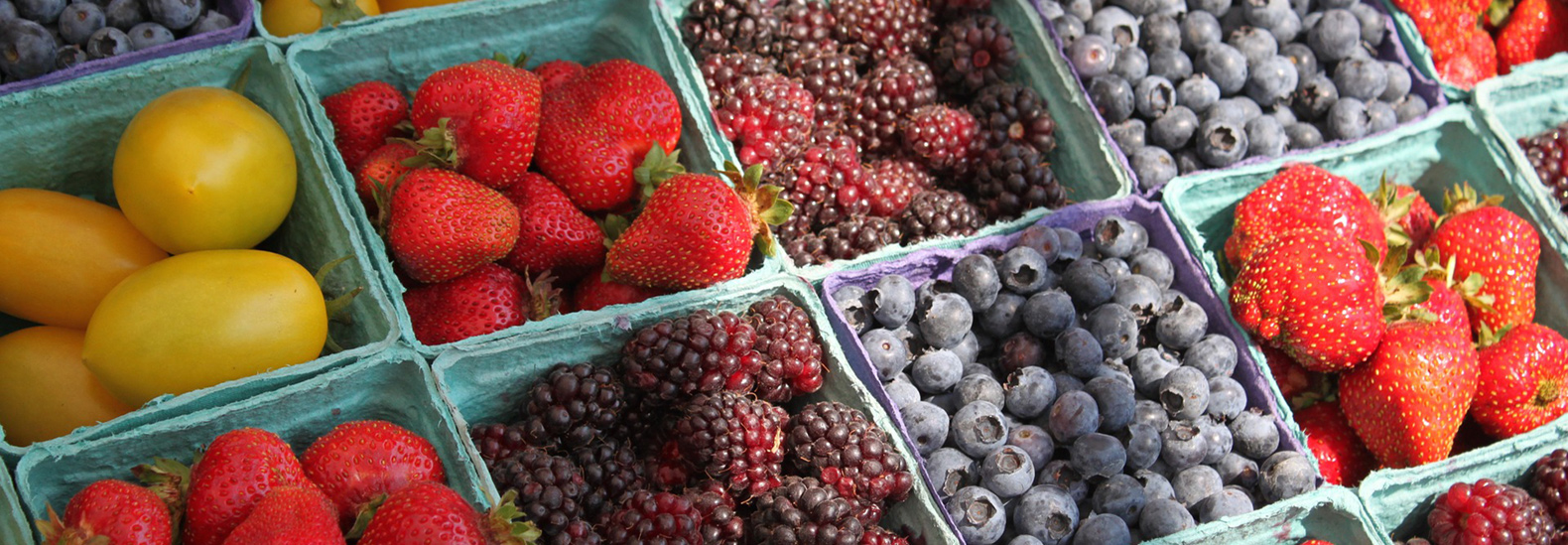 8 tips to keep your summer fruits and vegetables fresher for longer