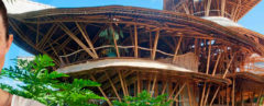 Bamboo architecture, building with bamboo, Ibuku architecture, Elora Hardy, Bamboo building Bali, Bali Bamboo, architecture from Bamboo, building with bamboo, Sharma Springs Ibuku