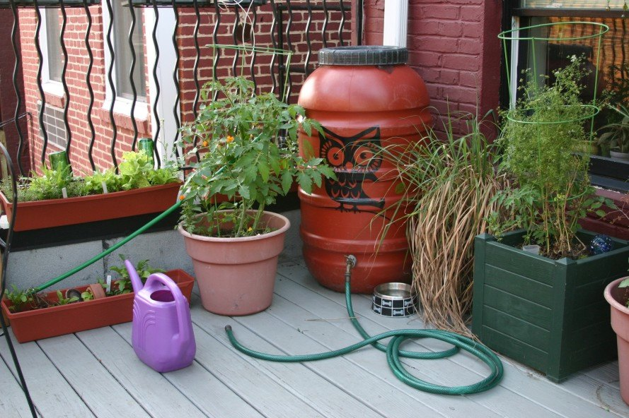 rain barrel, water conservation, rain barrel rain harvesting