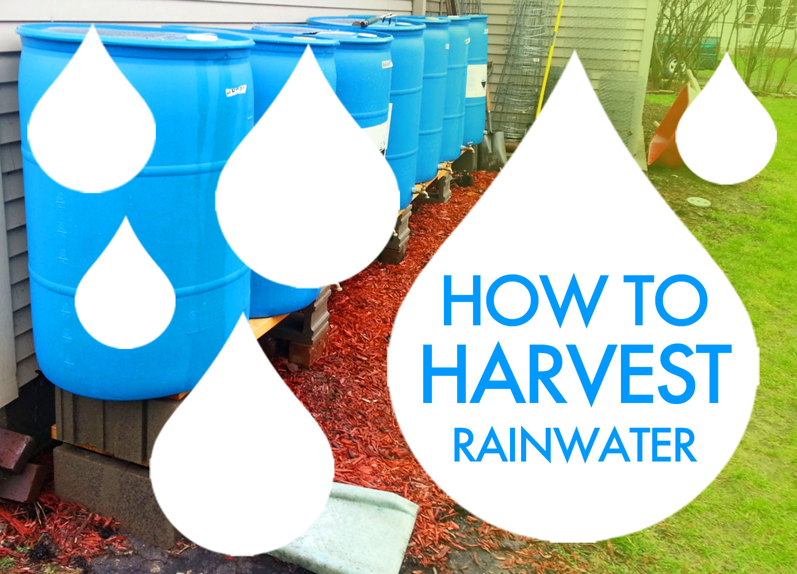 6 innovative ways to harvest and harness rainwater