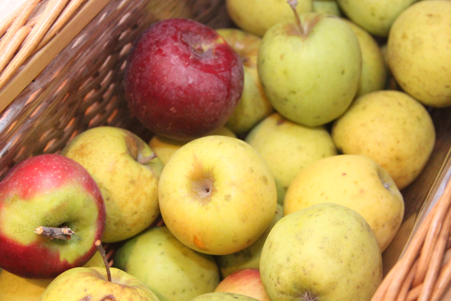 """Walmart introduces line of """"ugly"""" fruit to combat food waste"""
