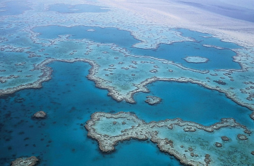 australia climate change, australia global warming, unesco, united nations cover up, unesco cover up, great barrier reef climate change