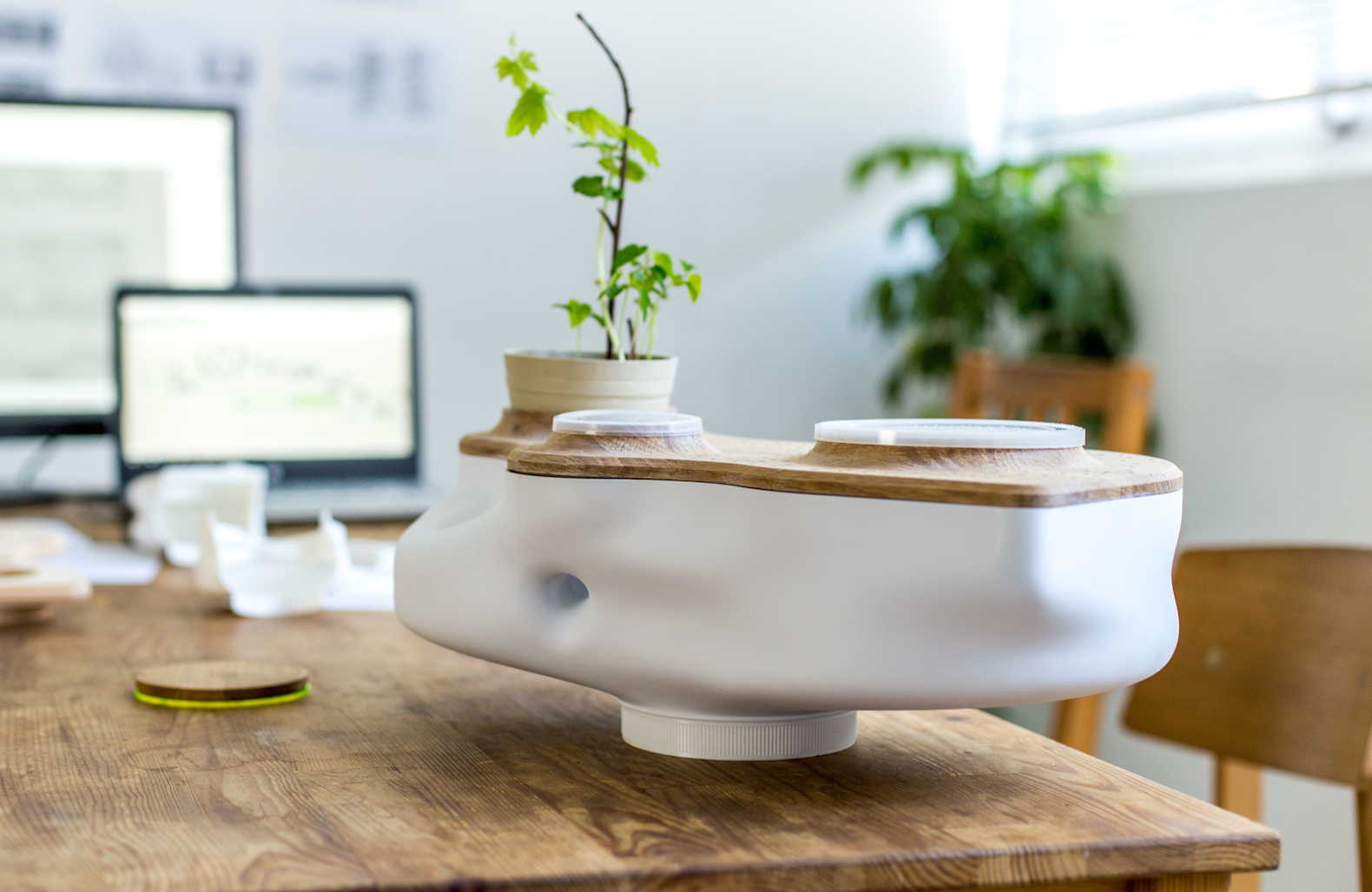 Beautiful, Odorless Tabletop Ecosystem Is Powered With Food Waste