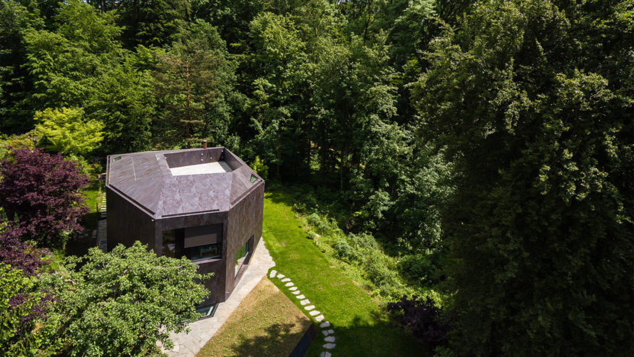 Casa Forest, Switzerland, forest residence, Basel, Daluz Gonzalez Architekten, green architecture, double-height space, natural light