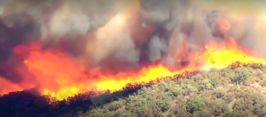 California, California fire, Southern California, Southern California fire, San Bernardino, San Bernardino fire, Blue Cut Fire, fire, fires, natural disaster, drought, evacuation, firefighters