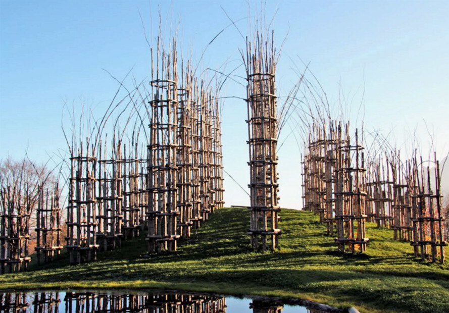 cattedrale vegetale, growing building, live building, living tree construction, living tree building, living tree cathedral, tree cathedral, living cathedral Italy, living construction, green construction