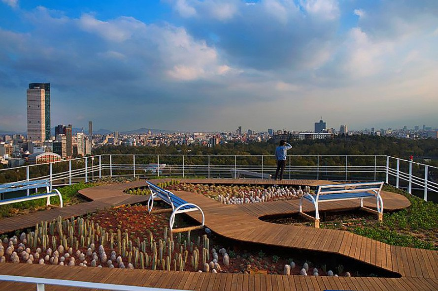 Foro Ciel, Rojkind Arquitectos, AGENT, Foro Ciel by Rojkind Arquitectos and AGENT, Foro Ciel by Rojkind Arquitectos, Foro Ciel by AGENT, Mexico City, Mexico, Coca-Cola, rooftop helipad, helipad, green roof, rooftop garden, garden, native plants, plants, co-work, co-working, co-working space, co-working office, cowork, coworking, coworking office, coworking space, office, office space, work space