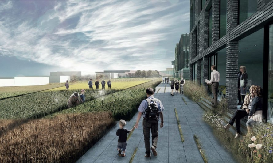 Bill mcdonough, urban farming, agriculture, cradle to cradle, agro-urbanism, design, Danish design, urban agriculture, Aarhus, Denmark, agro food park, food production,