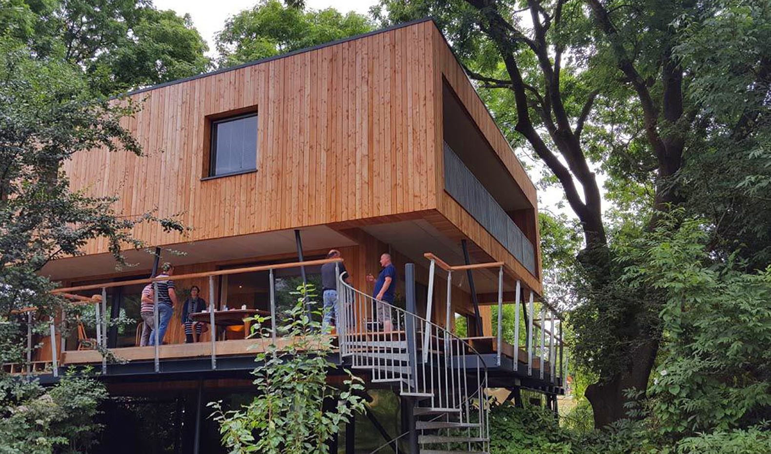This clever treehouse was designed to dodge natural obstacles and local  building codes