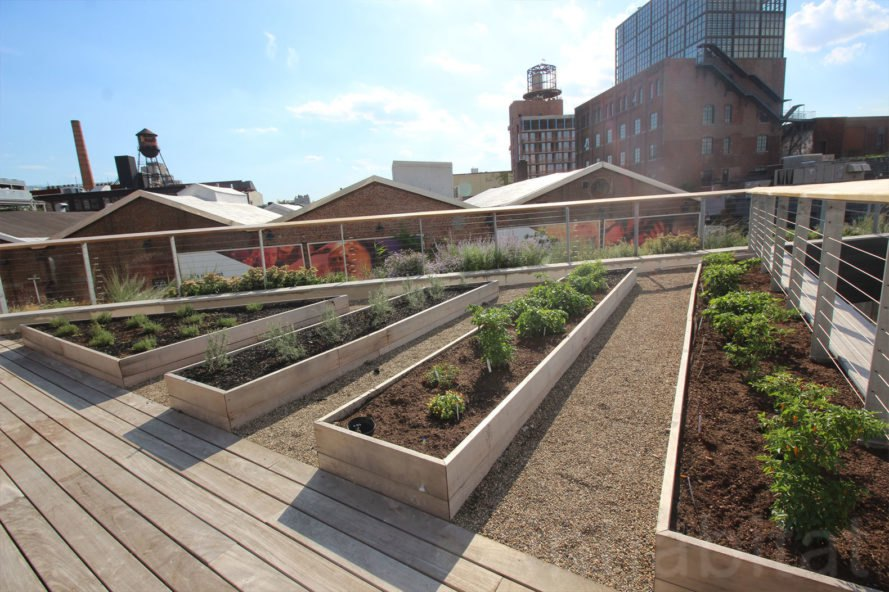 Enjoy Sweeping City Views From This New Public Rooftop Garden Atop The William Vale Hotel Beds Inhabitat Green Design Innovation Architecture Green Building