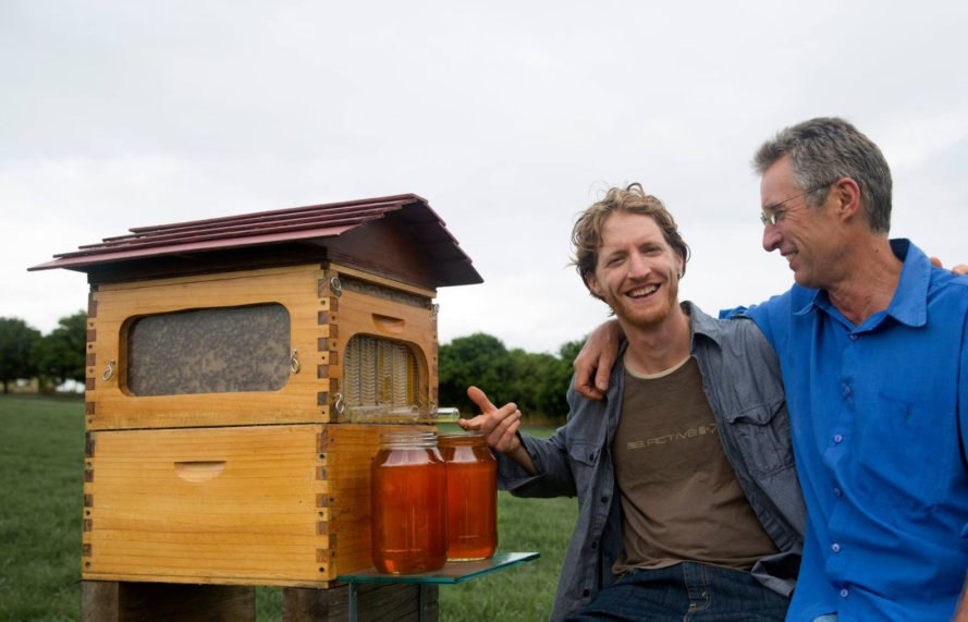 flow hive, bees, beekeeping, backyard beekeeping, honey production, crowdfunding campaign, successful crowdfunding, crowdfunded inventions, viral crowdfunding campaigns