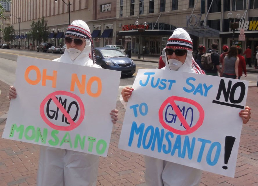 bayer, monsanto, roundup, glyphosate, gmo labeling, gmo, bernie sanders, u.s. department of justice, monopoly, agribusiness, seeds, pesticides, cancer, carcinogen, world health organization