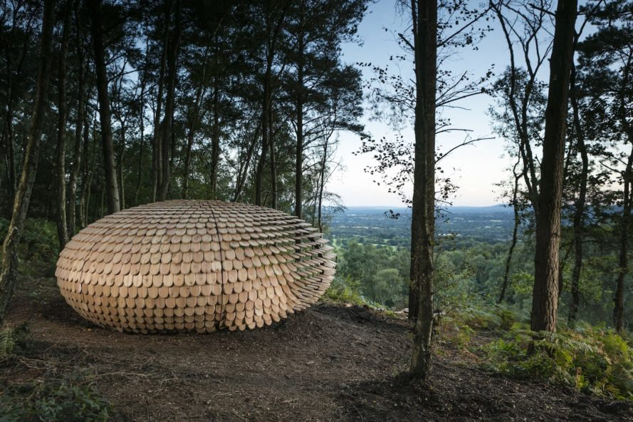 Perspectives by Giles Miller Studio, Perspectives Pavilion in Surrey Hills, pavilion project by Surrey Hills Arts, Winterfold Forest pavilion, cedar shingle pavilion,