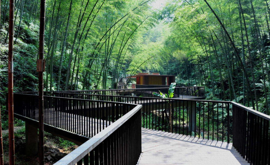 Zhuhai National Park, park gateway, China, bamboo, bamboo structure, Bamboo Sea, West-line studio, green architecture, concrete, glass roof, humidity