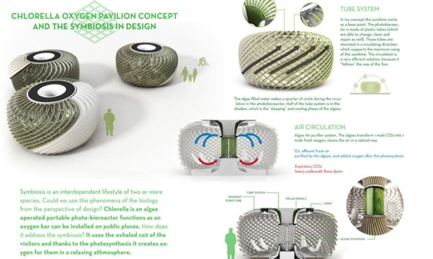 biodesign competition, x-prize foundation, regenerative building, biomimicry, symbiotic design, oxygen bar, chlorella oxygen pavilion, algae, algae fountain, alex miklosi