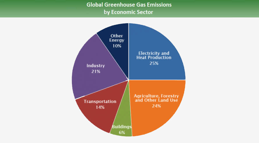 methane, livestock, cows, cattle, greenhouse gas emissions, emissions from agriculture, agriculture industry, global agriculture emissions, global methane emissions, seaweed, red seaweed, seaweed in cattle feed, Australia, Rocky De Nys, James Cook University