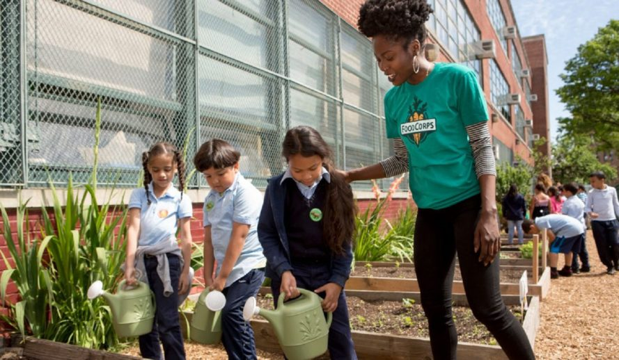 FoodCorps, school gardens, gardening with children
