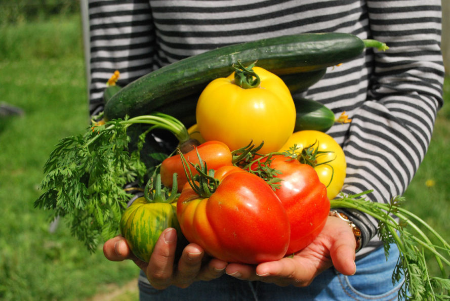 Belgian Supermarket Unveils Plan To Sell Food Grown On Their Own