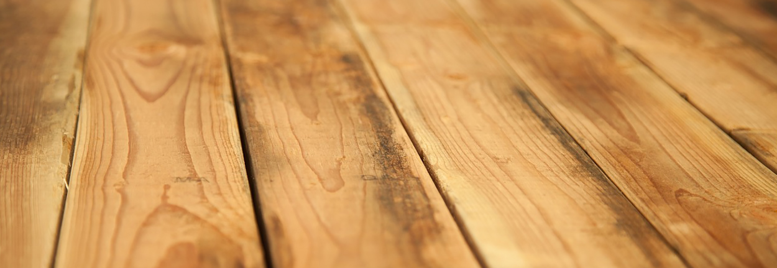 Revolutionary floors made from waste wood pulp generate clean energy
