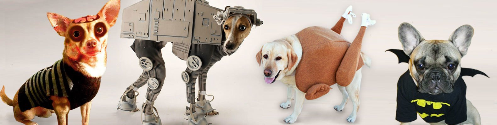 10 adorable diy halloween costumes for pets inhabitat green 10 adorable diy halloween costumes for pets inhabitat green design innovation architecture green building solutioingenieria Image collections