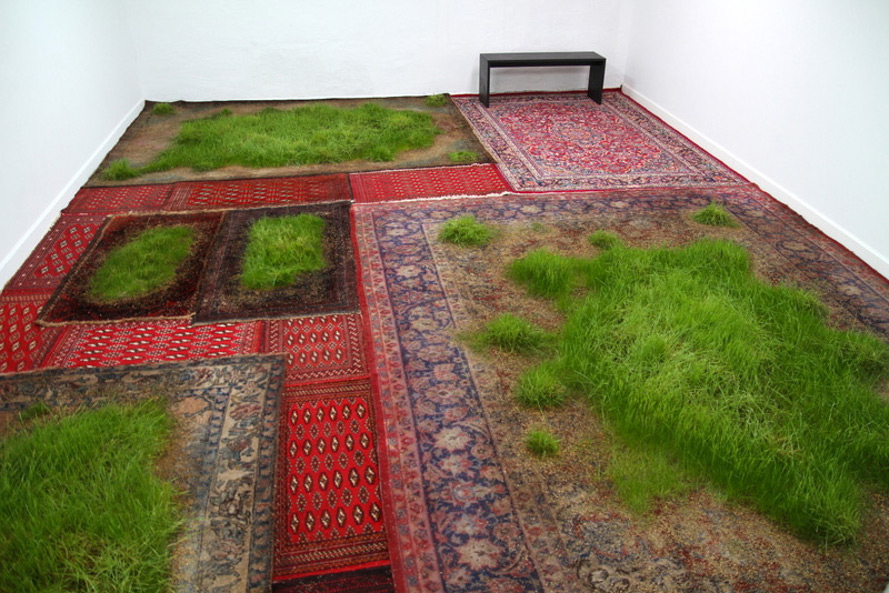 Martin Roth makes indoor lawns by growing real grass on aging ...