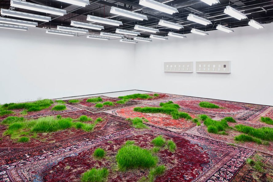 martin roth, persian rug, growing grass indoors, growing grass on a rug, nature art, korean cultural center UK, korean cultural center london, temporary lawn, temporary indoor lawn