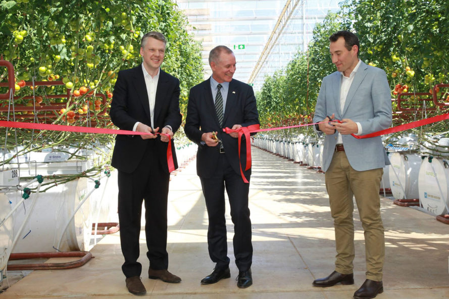 Sundrop, Sundrop Farms, farm, renewable energy, solar power, sun, sunshine, sunlight, seawater, desalination, Australia, Australian desert, desert, desert farm, tomato, tomatoes, official opening, grand opening, opening