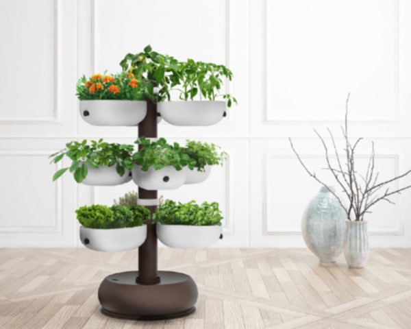indoor garden, indoor growing, indoor gardening, kitchen garden, Taiga Tower, smart indoor garden, LED indoor garden, self watering garden, indiegogo garden, Taiga garden, tower garden, indoor tower garden