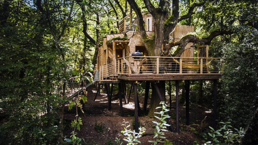 The Woodman's Treehouse, Guy Mallinson Woodland Workshop, treehouse, England, Dorset, green architecture, roof deck, spiral staircase, boardwalk, outdoor barbeque, timber