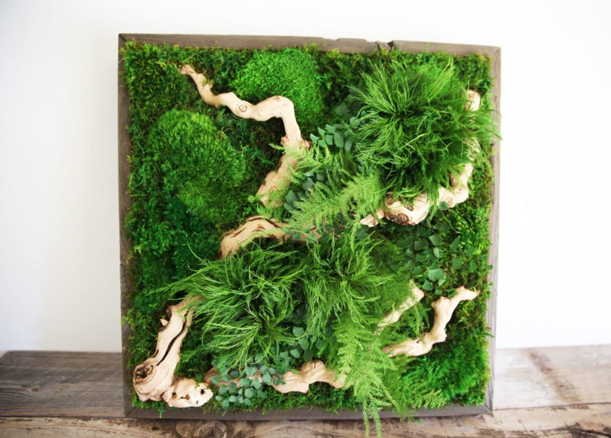 artisan moss, artisan moss art, preserved moss, preserved plants, preserved moss wall art, moss art etsy, moss art, eco-friendly art, green art, eco art, green wall, living wall, botanical art, botanical wall art, hanging wall art, green wall art