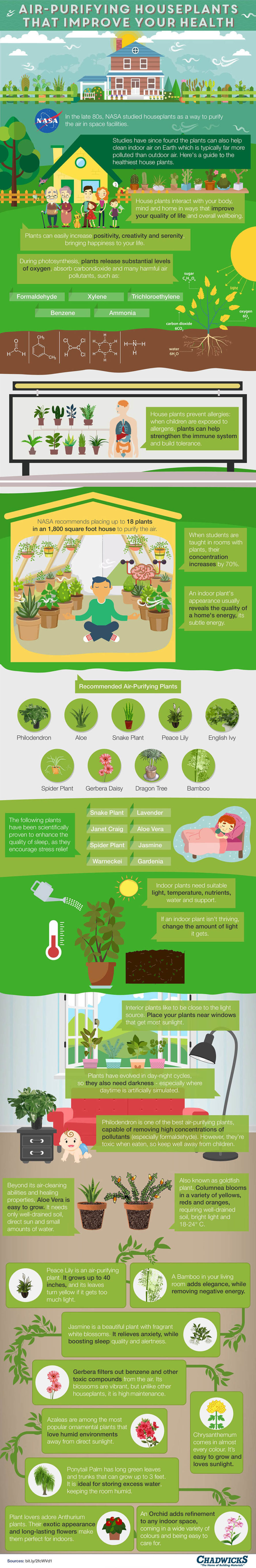 air purifying plants, air purifiers, air purification, pollution, air pollution, NASA, NASA houseplants, NASA plant study, NASA air pollution, infographic