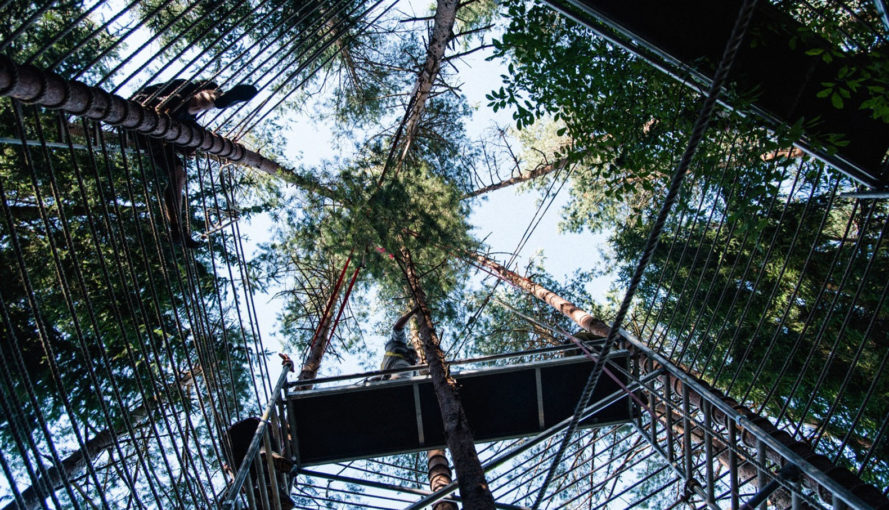 Forest Temple, temporary installation, Lithuania, teepee, gathering space, multifunctional space, Marco Casagrande, architectural workshop, green architecture