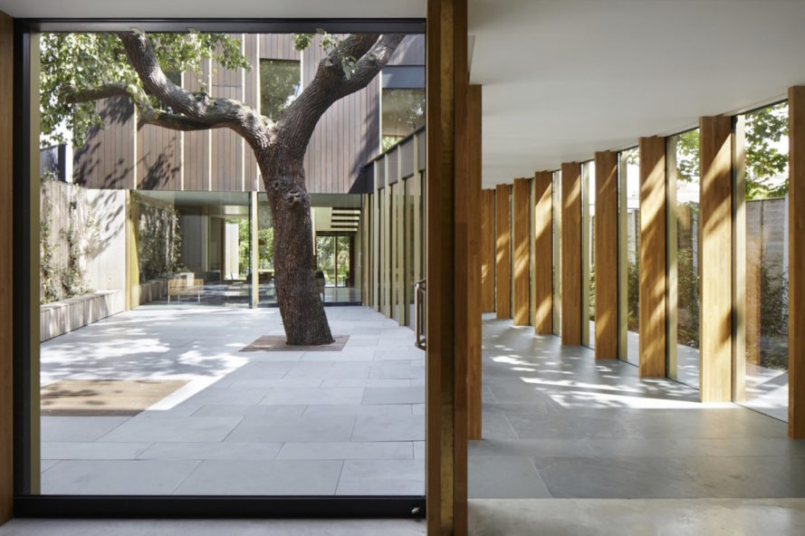 Pear Tree House by Edgley Design, Pear Tree House in London, house built around a tree, architecture built around a tree, Victorian fruit orchard house, Jake Edgley house design