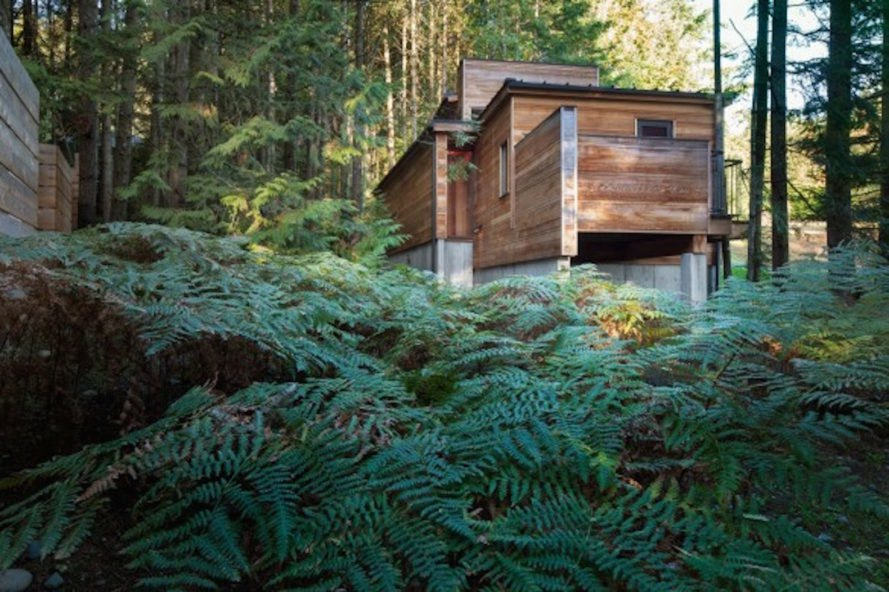 British Columbia Cabin, Rainforest Retreat by Agathom, Rainforest Retreat Architizer winner, artist studio in Vancouver Island, Vancouver Island cabin