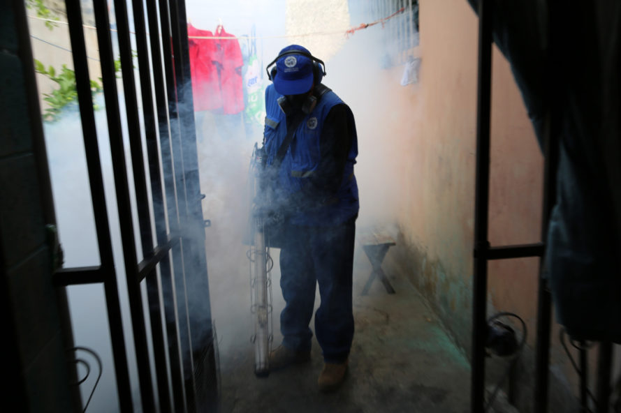 world health organization, who, zika virus, zika, aedes aegypti, mosquito-borne illness, pregnancy, birth defects, microcephaly, brazil, colombia, central america, florida