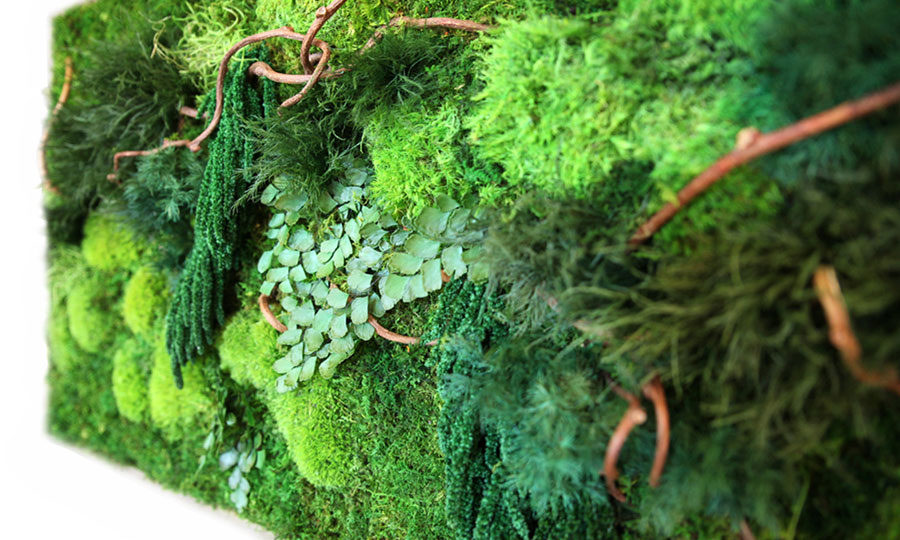 We Re Giving Away An Artisan Moss Green Wall Made With