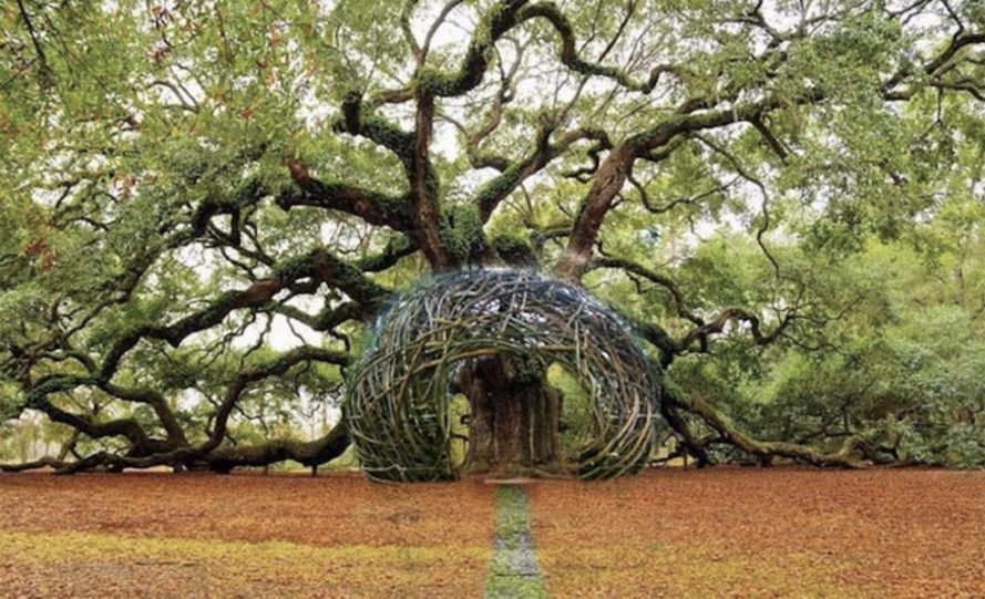 13 Giant Bird Nests For Humans That Just Beg You To Cozy Up And Relax